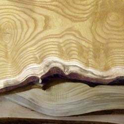 Live edge wood at Metro Hardwoods